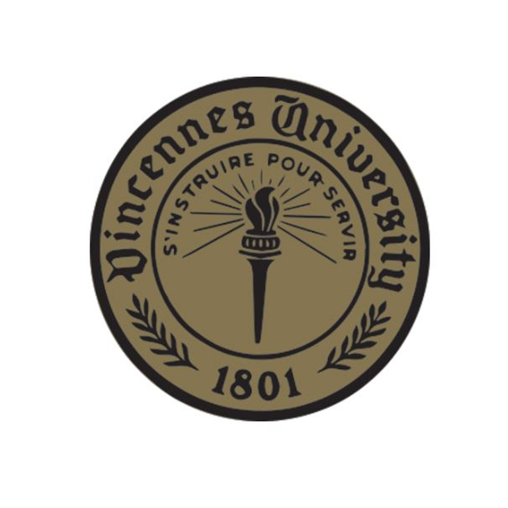 Cover Image For VU LAPEL PIN GOLD